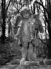 Lost Child (Don Henderson) Tags: bw sunlight monochrome cemetery grave angel peace fujifilm comfort saddness meloncholy lostchild xs1 myfujifilm