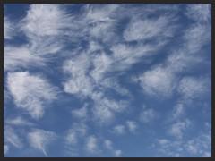 Wind blown clouds (Zelda Wynn) Tags: newzealand sky nature weather clouds auckland cloudscape troposphere zeldawynnphotography