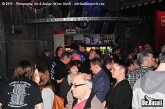 2016 Bosuil-Het publiek bij The Paladins en Cats on the Corner 6