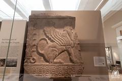 Bas-relief (andrea.prave) Tags: uk england london museum museu muse londres museo britishmuseum londra mesopotamia babilonia basrelief inghilterra  mze    bassorilievo bajorrelieve    babilon