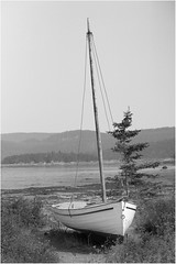 Sail (ROHphotos.) Tags: camping vacation blackandwhite bw sailboat canon boat nationalpark quebec monochromatic lowtide bic 6d canon6d rohphotos
