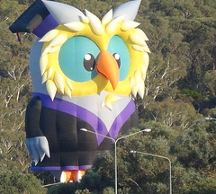 Going down (spelio) Tags: water festival mar hotair balloon australia canberra act 2016 lakeburleygriffin