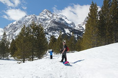 Daddy towing a little girl 2 (Aggiewelshes) Tags: travel winter snow april snowshoeing adrian wyoming jacksonhole grandtetonnationalpark 2016 gtnp taggartlaketrail