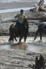 IMG_EOS 7D Mark II201604030554 (David F-I) Tags: horse equestrian horseback horseriding trailriding trailride ctr tehapua watrc wellingtonareatrailridingclub competitivetrailriding sporthorse equestriansport competitivetrailride april2016 tehapua2016 tehapuaapril2016 watrctehapuaapril2016