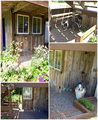 Potting Shed Makeover With Recycled Pallets (irecyclart) Tags: garden shed pottingshed recycledpallet