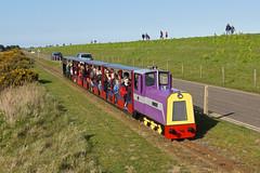 """The Duke"" Wells-next-the-sea (Gridboy56) Tags: uk railroad england train norfolk trains locomotive railways locomotives narrowgauge pinewood wellsnextthesea theduke alankeef"