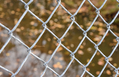 Happy Fence Friday!! (Dotsy McCurly) Tags: nature water beautiful leaves fence happy pond nikon dof bokeh nj depthoffield friday d7200
