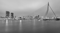 Rainy Rotterdam (Maciek Lulko) Tags: longexposure bridge blackandwhite holland netherlands monochrome architecture clouds grey arquitectura rotterdam nikon waterfront cloudy bridges tokina rainy infrastructure architektur architettura erasmusbrug fogg erasmusbridge architektura contemporaryarchitecture holandia archidose architecturephotos nikond800 tokina1628 waterandarchitecture