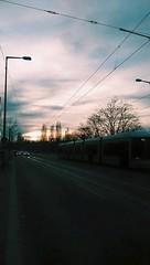 Berlin Sunset with Tram (sophieghoyle) Tags: trees sunset berlin cars germany tram tramlines prenzlauerberg strassenbahn mauerpark capitalcity