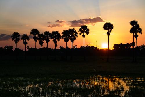 Siem Reap Sunset