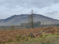 Conic Hill 003 (pigeon812711) Tags: conichill