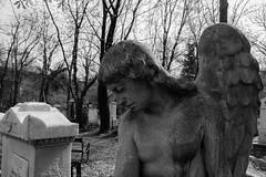 wounded & heartbroken (Feroswelt) Tags: vienna wien art cemetery graveyard sad wounded heartbroken feroswelt