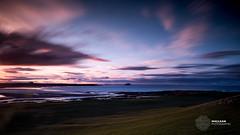 Belhaven Bay, East Lothian (MacLeanPhotographic) Tags: beach birds landscape wildlife fujifilm 100400mm belhavenbay winterfield xpro2 lee09ndgrad