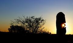 Living Desert Sunset... (The Pocket Rocket) Tags: sunset australia nsw sculptures brokenhill thelivingdesert