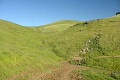 Brushy Peak Trail (jeffmgrandy) Tags: landscape hiking hills livermore altamont brushy