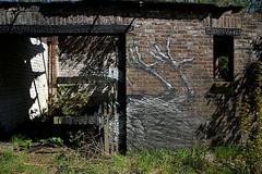 graffiti doel (wojofoto) Tags: abandoned graffiti village belgium belgie dorp roa doel wolfgangjosten wojofoto