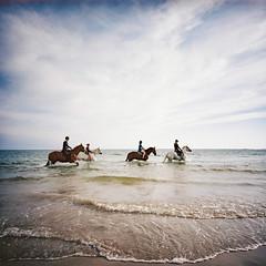 Horse riders on a French beach (lomokev) Tags: sea horses horse seascape lomo kodak kodakportra400vc scape portra kodakportra400 kodakportra lomogaphy houseriding lca120 lomolca120 file:name=150930lomolca120kodakvcc000002 roll:name=150930lomolca120kodakvcc