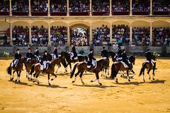 Caballistas (Miguel.Herrera) Tags: caballos andaluca ronda jinetes caballistas