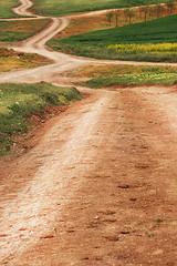 Rural Landscape (Cristina Tiurean Photography) Tags: rural canon landscape rustic land curve