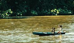 1986 Blem_1764 (ixus960) Tags: southamerica brasil america brsil amazonia amazonie amazone amrique amriquedusud