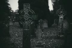 Crosses (DmitryXT1) Tags: england cemetery graveyard dark interesting memorial moody cross gothic crosses headstones atmosphere sombre gravestone churchyard macabre celtic tombstones inscription epitaph mortality