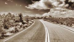 Joshua Tree National Park (Oliver Leveritt) Tags: california road trees cactus monochrome sepia highway scenery rocks desert platinum joshuatreenationalpark afsnikkor2470mmf28ged oliverleverittphotography nikond610