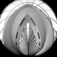 Like the Woman I Love (Thomas Hawk) Tags: bw usa wisconsin architecture america unitedstates fav50 unitedstatesofamerica milwaukeeartmuseum milwaukee santiagocalatrava fav10 fav25