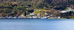 El rbol (Jesus_l) Tags: arbol mar europa noruega fiordos jessl