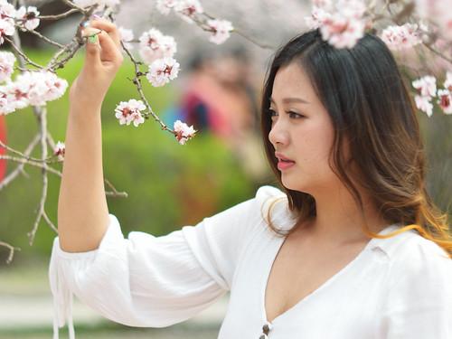 Chinese Paparazzi