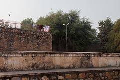 Laundry hanging (_NicoDem_) Tags: india canon mark delhi ii 5d complex qutub minar 2015 5dmarkii 5dmkii