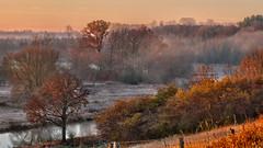 Good morning Grand River - cropped 16x9 (virgil martin) Tags: mist ontario canada river landscape fallcolors gimp grandriver goldenhour morningmist westmontrose microsoftice oloneo olympusomdem5