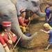 Little girl Feeding an Elephant at the Circus