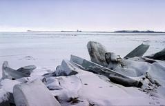 IJsselmeer, ijsschotsen van kruiend ijs, winter 1996 (wally nelemans) Tags: winter holland 1996 nederland thenetherlands icefloes ijsselmeer ijsschotsen driftingice kruiendijs