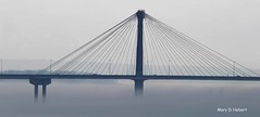Clark Bridge Alton, IL (Mary Hebert) Tags: bridge illinois mississippiriver alton clarkbridge cablestayed
