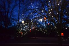 Christmas 2015 Yard (JeffCarter629) Tags: christmas christmaslights ge generalelectric vintagechristmas vintagechristmasdecorations vintagechristmaslights generalelectricchristmas gechristmas gechristmaslights generalelectricchristmaslights christmaslightideas commercialchristmasdecorations