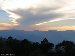 Atardecer sobre la parte alta de la Sierra de Juarez (tambin llamada Sierra Norte) mirando haca la parte interior del estado de Oaxaca a 3200 m snm, Oaxaca, Mxico (David Haelterman) Tags: nature naturaleza wilderness america amrique americadelsur sudamerica southamerica amriquedusud tropicos tropiques tropics