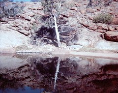The original Alice Spring, N.T. - 1977 (Aussie~mobs) Tags: original spring australia waterhole 1977 northernterritory alicespring