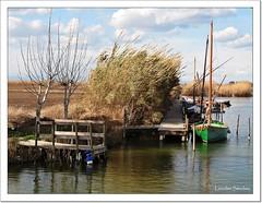 Embarcadero- El Palmar (Valencia) (Lourdes S.C.) Tags: espaa agua cielo nubes embarcadero laguna barcas elpalmar laalbufera provinciadevalencia