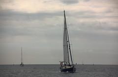 Voilier (philippe.ducloux) Tags: ocean sea mer seascape france water canon boat brittany eau bretagne bateau voilier finistre le ocan batz ledebatz 450d canon450d strictlygeotagged
