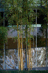 Detail of Ekoin Temple, Nenbutsudo () (christinayan01) Tags: building japan architecture temple tokyo shrine perspective buddhism ryogoku