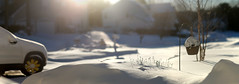 winter wonderland. Winter storm Jonas 2016 (lowlova) Tags: snow stitch pano wheels jersey daisy method winterstorm tansy brenizer