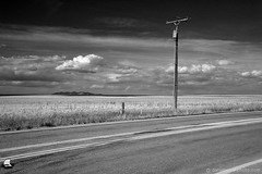 The Simple Pleasures of Road Tripping - Somewhere by Moccasin, Montana (DTC_0269) (masinka) Tags: road sky bw west clouds big montana mt unitedstates roadtrip pole moore american ontheroad moccasin etbtsy