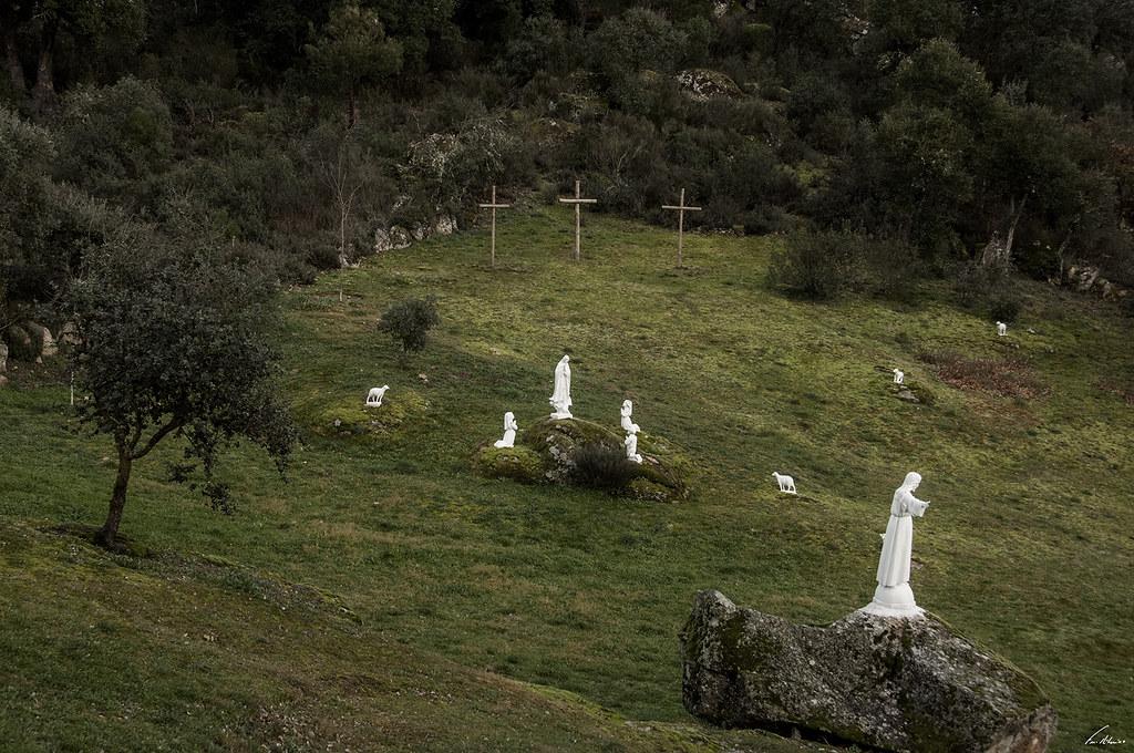 1600-nogueirinhas (273)