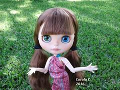 Amelia veraniega