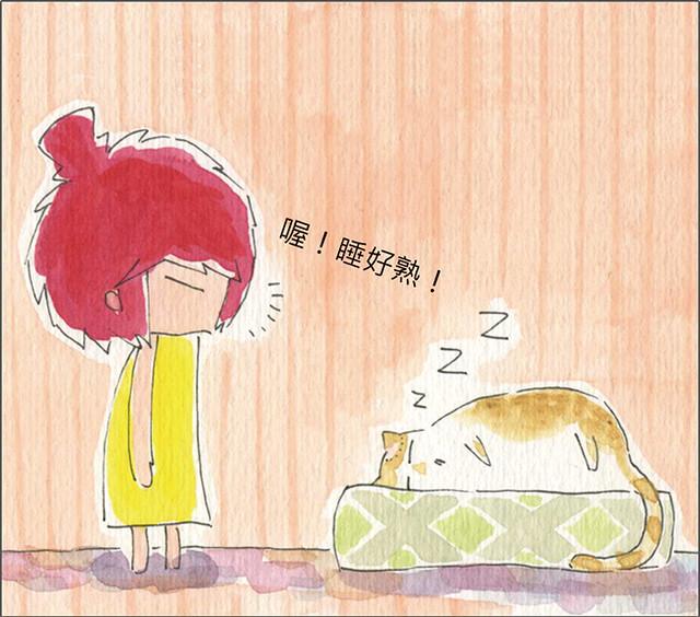 家裡來了一隻貓 這樣也能除粉刺