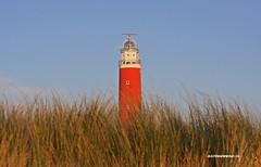 Lighthouse of Texel. #Texel #lighthouse #vuurtoren #red #blue #dunes #light #beach #wadden #waddenzee #noordzee #waddensea #Northsea #justin #sinner #pictures #canon #sigma #holland #naturer #natuur #zee #kust #coast #noordholland #photo #amazing #love (JustinSinner.nl) Tags: pictures blue justin light red lighthouse holland love beach waddenzee canon coast photo wadden amazing dunes noordzee natuur sigma zee northsea vuurtoren sinner texel noordholland kust waddensea naturer