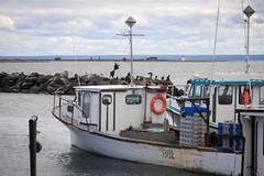 Marina de Carleton (Seb & Jen) Tags: canada boat quebec bateau gaspesie carleton baiedeschaleurs carletonsurmer