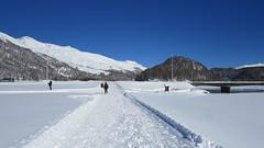 Silvaplana-Surlej, 11.2.16 (ritsch48) Tags: engadin silvaplana silvaplanersee winterwanderweg