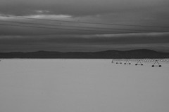 Snow (Ignacio Blanco) Tags: blackandwhite usa snow mountains field oregon america train landscape coast scenery view unitedstates amtrak journey irrigation starlight roomette