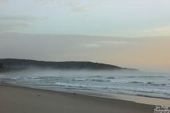 Catherine Hill Bay Beach (JessPaigePhotography) Tags: morning mist beach fog sunrise landscape outdoor centralcoast catherinehillbay